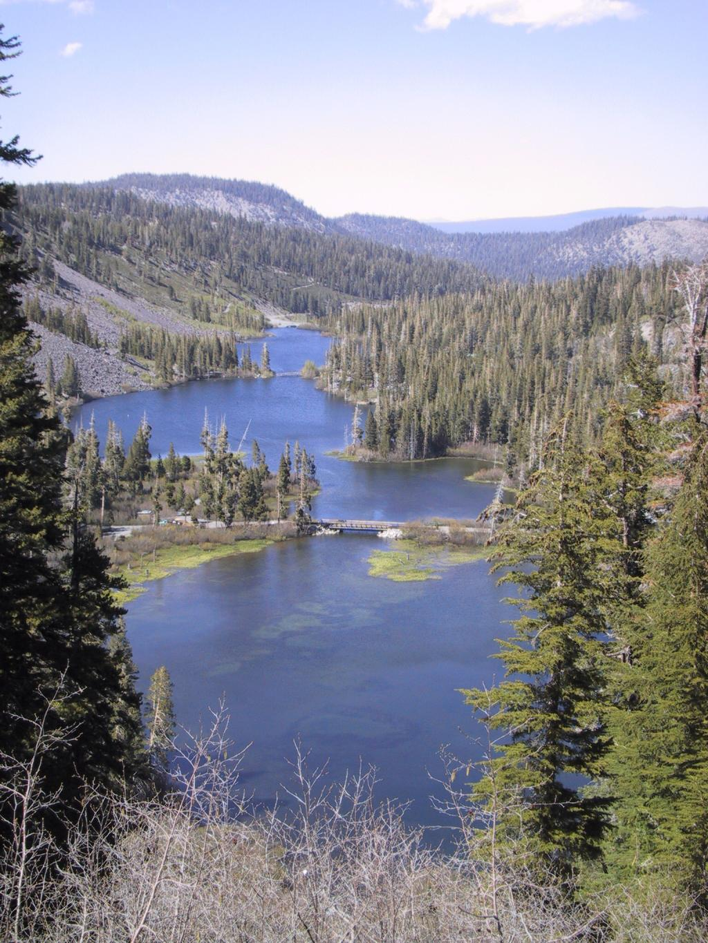 Twin lakes campground for Mammoth lakes fishing